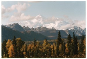 Fall View of Mt. McKinley in Denali National Park